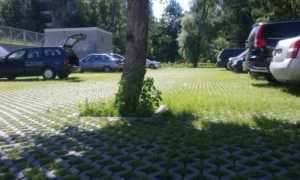 Газонная георешетка для парковки бетонная